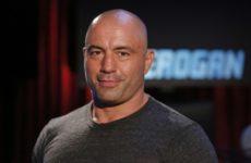 Джо Роган высказался за введение в UFC дивизиона до 165 фунтов