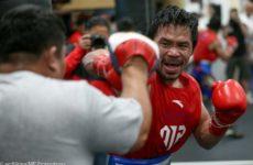 Мэнни Пакьяо не исключает возможность проведения боя с Майки Гарсией