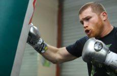 Сауль Альварес не исключает возможность боя против Сергея Ковалева