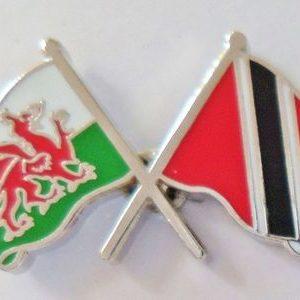 Уэльс — Тринидад и Тобаго. Прямая трансляция. Футбол. 20.03.19