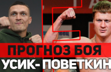 Прогноз на бой Александр Поветкин — Александр Усик