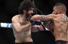 Фото UFC 235: Джон Джонс — Энтони Смит