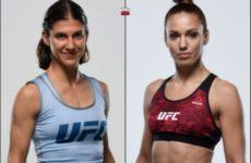 Видео боя Антонина Шевченко — Роксанн Модаффери UFC Fight Night 149