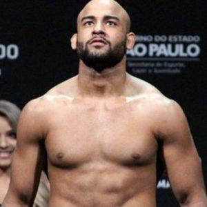 Видео боя Ворли Алвес — Серхио Мораес UFC 237