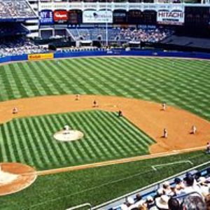 Прямая трансляция Канзас-Сити Роялс — Нью-Йорк Янкиз. MLB. 25.05.19