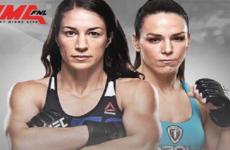 Видео боя Тиаго Мойзес — Курт Холобау UFC 237