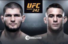 Стали известны цены на билеты турнира UFC 242 в Абу-Даби