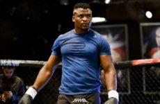 Франция собирается легализировать MMA в январе 2020 года