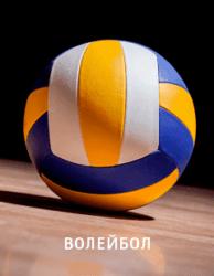 Прямая трансляция Франция - Болгария. Волейбол. Чемпионат Европы - 2019. 16.09.19