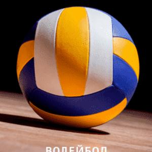 Прямая трансляция Черногория — Польша. Волейбол. Чемпионат Европы — 2019. 17.09.19
