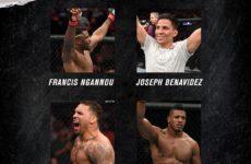Бонусы турнира UFC Fight Night 155: Фрэнсис Нганну — Джуниор Дос Сантос