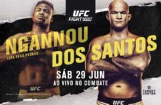 Результаты турнира UFC Fight Night 155: Фрэнсис Нганну — Джуниор Дос Сантос