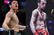 Слухи: Аскар Аскаров — Брэндон Морено проведут бой на турнире UFC в Мехико