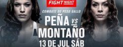 Видео боя Джулианна Пенья — Никко Монтано UFC on ESPN+ 13