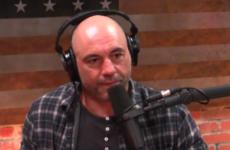 Джо Роган рассказал о потенциальном бое Масвидаля и МакГрегора