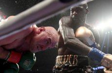 Деонтей Уайлдер рассматривает возможность стать абсолютным чемпионом
