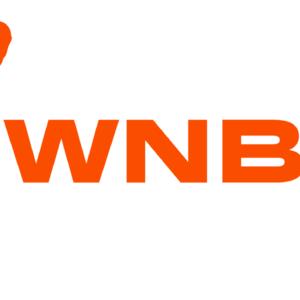 Прямая трансляция Феникс Меркури — Даллас Вингз. WNBA. 17.07.19