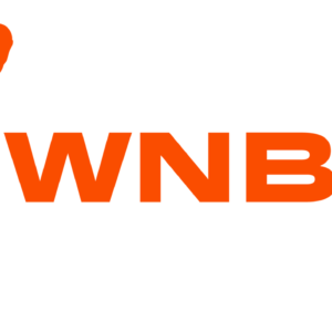 Прямая трансляция Нью-Йорк Либерти — Коннектикут Сан. WNBA. 04.08.19