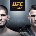 Прогноз на бой Хабиб Нурмагомедов - Дастин Порье. UFC 242. 07.09.19