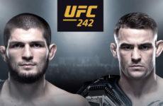 Прогноз на бой Хабиб Нурмагомедов — Дастин Порье. UFC 242. 07.09.19