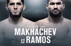 Видео боя Ислам Махачев — Дэйви Рамос UFC 242