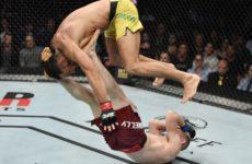 Зарплаты участников турнира UFC Fight Night 158: Дональд Серроне — Джастин Гэтжи