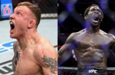 Прогнозы бойцов MMA на бой Джек Херманссон — Джаред Каннонье на UFC Fight Night 160