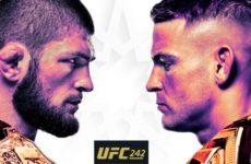 Файткард турнира UFC 242 : Хабиб Нурмагомедов — Дастин Порье