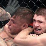 Медицинские отстранения после турнира UFC 242