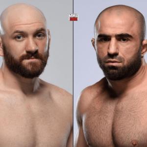 Видео боя Омари Ахмедов — Зак Каммингс UFC 242