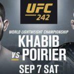 Видео боя Хабиб Нурмагомедов — Дастин Порье UFC 242