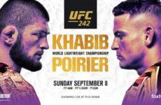 Прямой эфир UFC 242 Хабиб Нурмагомедов — Дастин Порье. Смотреть онлайн