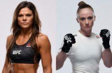 Видео боя Джей Джей Олдрич — Лорен Мюллер UFC Fight Night 161