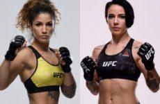 Видео боя Джессика-Роуз Кларк — Пэнни Кианзад UFC Fight Night 163