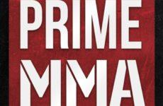 Видео боя Ислам Гаджимурадов – Александр Куликов Prime MMA 2