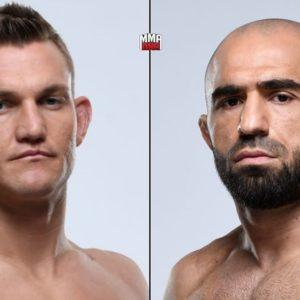 Видео боя Омари Ахмедов — Йен Хейниш UFC 245