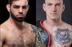 Видео боя Давид Дворак — Бруно Сильва UFC Fight Night 170