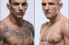 Видео боя Ренато Мойкано — Дамир Хадзович UFC Fight Night 170