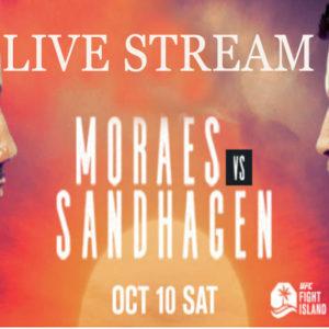 Прямая трансляция UFC Fight Night 179: Марлон Мораес — Кори Сандхаген