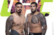 Видео боя Карлос Фелипе — Джастин Тафа UFC on ABC 1