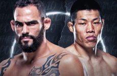 Видео боя Ли Джинглианг — Сантьяго Понзиниббио UFC on ABC 1