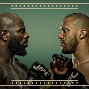 Прямая трансляция UFC Fight Night 186: Жаирзиньо Розенструйк — Сирил Ган