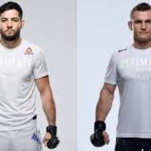 Видео боя Нассурдин Имавов — Йен Хейниш UFC on ESPN 27